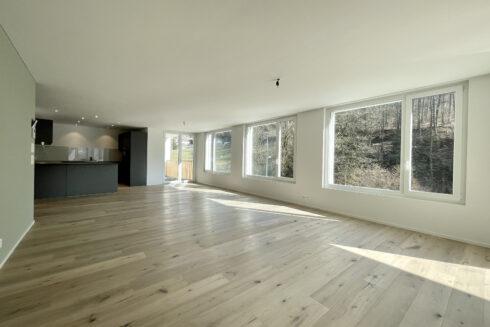 Verkauft: Neubau-Projekt in 4800 Zofingen: Neubau-Projekt am Sonnehoger in Zofingen